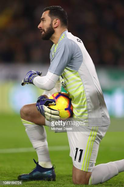 Rui Patricio of Wolverhampton Wanderers during the Premier League match between Wolverhampton Wanderers and Crystal Palace at Molineux on January 02...