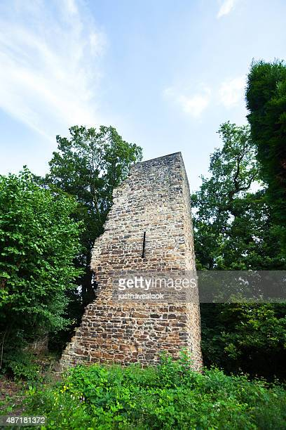 Rovine del castello di Luttelnau e torre