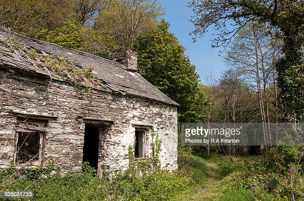 Ruin of an old Welsh cottage, Pembrokeshire