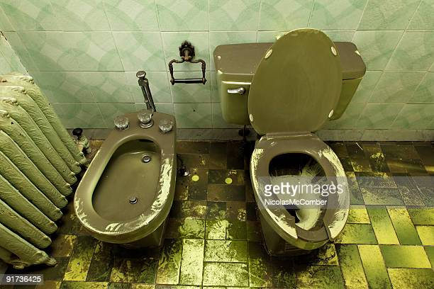 Ruined decrepit loo toilet and bidet