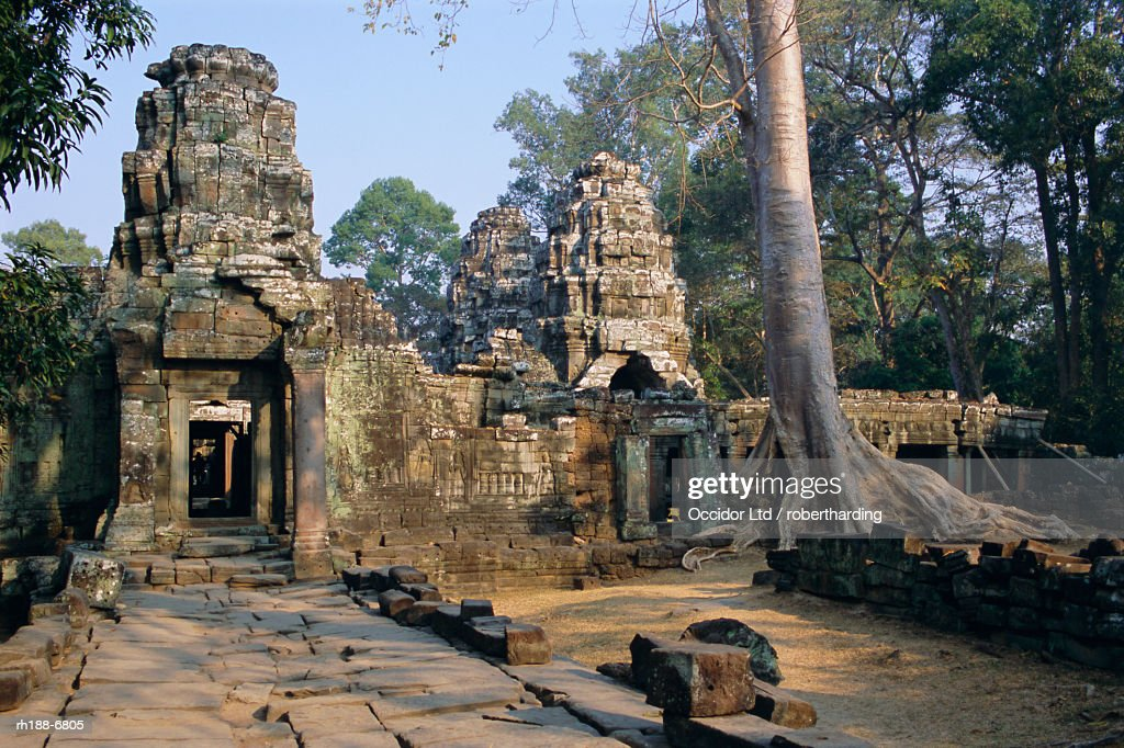 'Ruins at archaeological site, Ta Prohm temple, Angkor, UNESCO World Heritage Site, Cambodia, Indochina, Southeast Asia, Asia' : Foto de stock