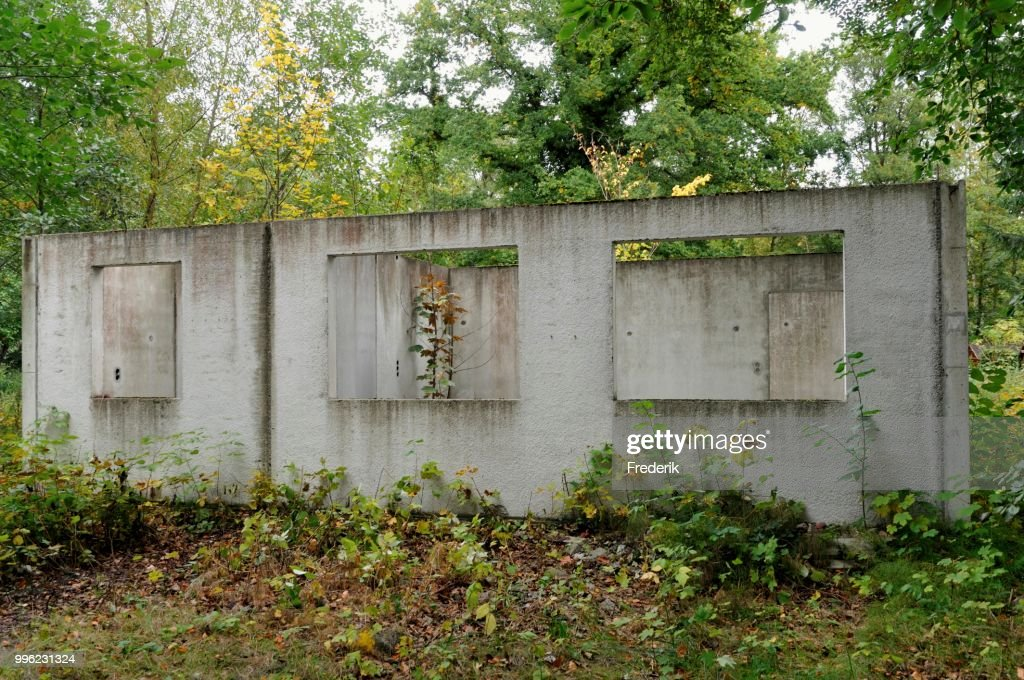 Ruins of a building, prefabricated concrete unit of a house, recaptured by nature, Mecklenburg-Western Pomerania, Germany : Stock Photo