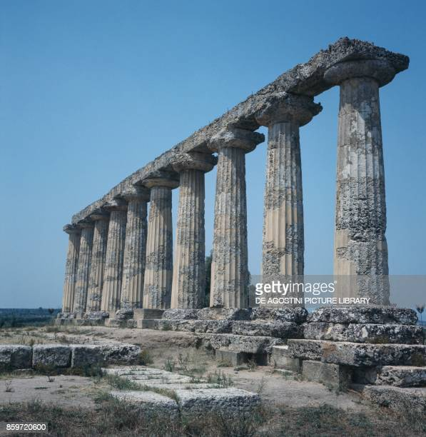 Ruins of a Doric temple in the archaeological area of Metaponto Bernalda Basilicata Italy 6th century BC