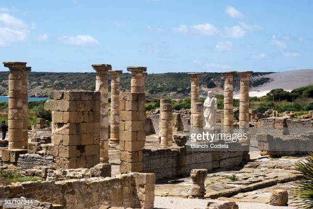 ruins of baelo claudia - tarifa stock pictures, royalty-free photos & images