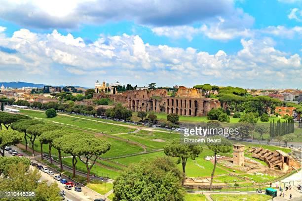 ruins of circus maximus, rome - circo massimo foto e immagini stock