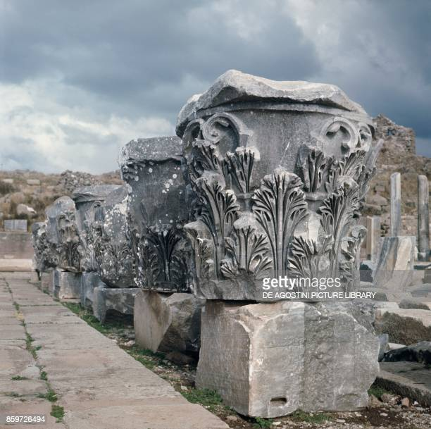 Ruins of columns with friezes in Pergamon, ancient Greek city in Aeolis , Turkey.
