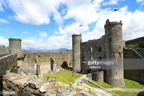 Ruins of Harlech Castle with Mount Snowdon in background