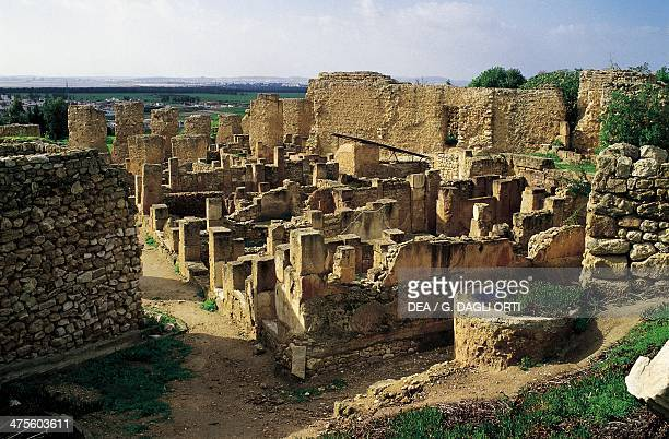 Ruins of houses dating back to the time of Hannibal Barca Byrsa Hill Archaeological Site of Carthage Tunisia