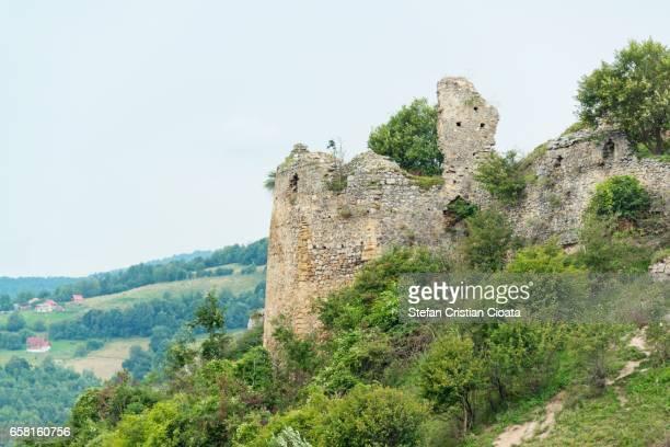Ruins of Liteni fortress Transylvania