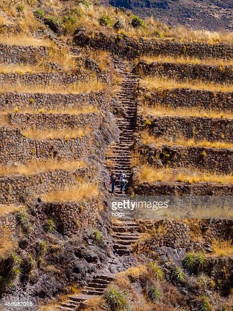 ruinas de pisac en el sagrado valley, perú - ruina antigua fotografías e imágenes de stock