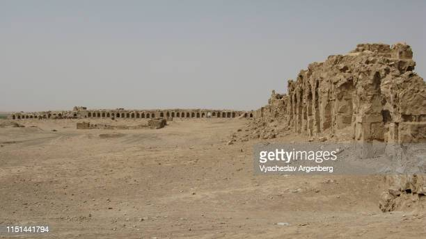 ruins of sergiopolis (resafa), syrian desert - argenberg stock pictures, royalty-free photos & images