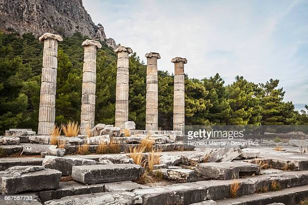 ruins of the sanctuary of athena - priene stock photos and pictures