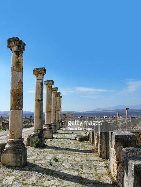 ruins of volubilis, morocco - volubilis fotografías e imágenes de stock