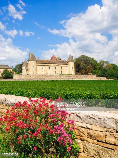 ブルゴーニュのルリー城 - シャロンシュルソーヌ ストックフォトと画像