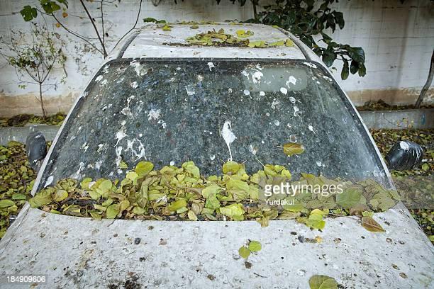 run down car with autumn leaves