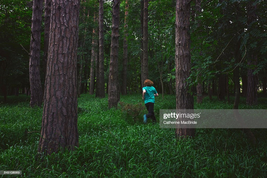 Run in the Forest : Stock Photo