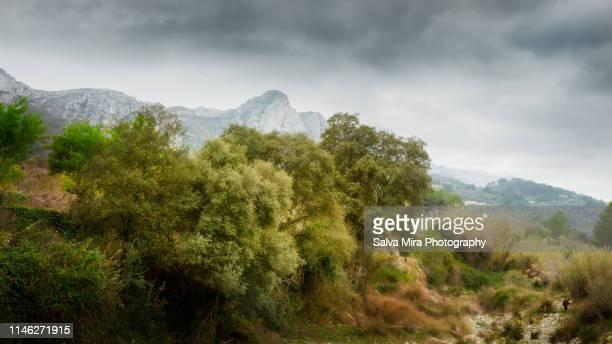 runder's ravine - alicante photos et images de collection