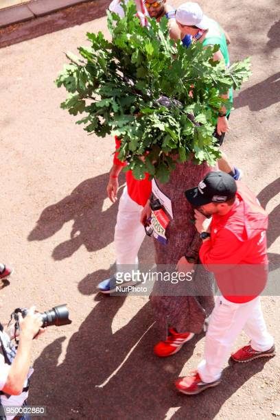Runner dressed as a tree is helped across the finish line during the 2018 London Marathon in central London on April 22 2018