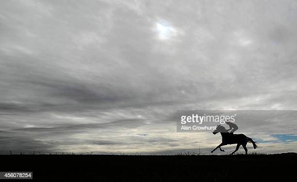 A runner eases down after finishing at Newmarket racecourse on September 25 2014 in Newmarket England