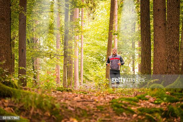 runner in a forest - off stock pictures, royalty-free photos & images