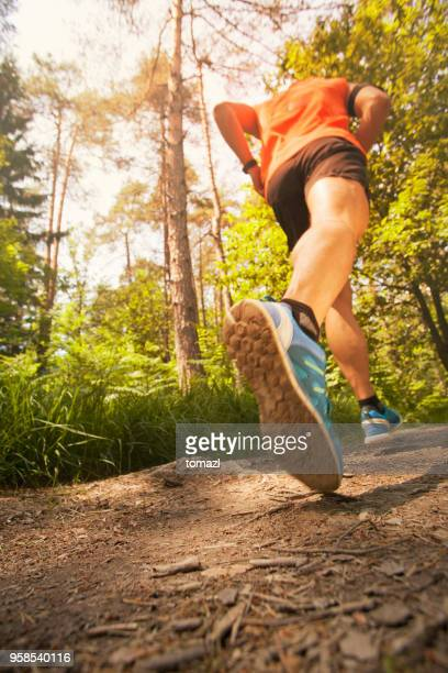 runner in forest - low angle view - vertical stock pictures, royalty-free photos & images