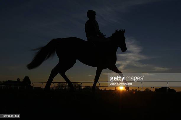 A runner makes its way to the start as the sun begins to set at Wincanton Racecourse on January 19 2017 in Wincanton England