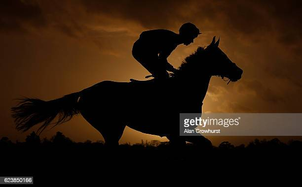 A runner makes its way to the start as the sun begins to set on the last race of the day at Wincanton Racecourse on November 17 2016 in Wincanton...