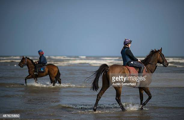 Runners and riders cool down in the sea at the Laytown races during the one day annual meet on September 10 2015 in Meath Ireland Laytown races held...
