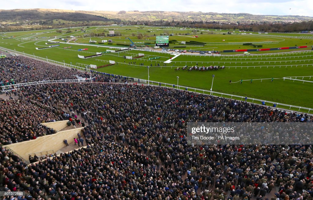 2018 Cheltenham Festival - Champion Day - Cheltenham Racecourse : News Photo