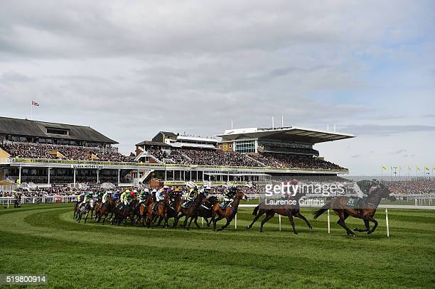 Runners and Riders in the Alder Hay Children's Charity Handicap Hurdle Race at Aintree Racecourse on April 8 2016 in Liverpool England