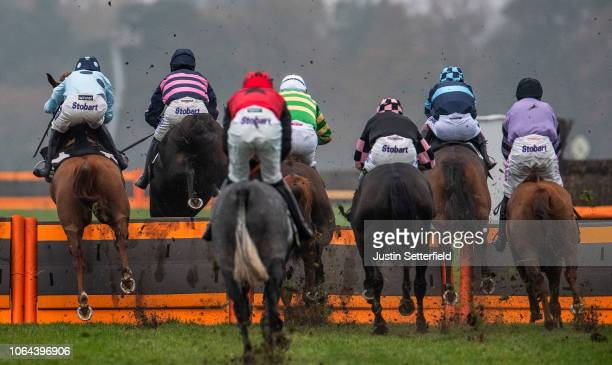 Runners and Riders jump a hurdle during the David Brownlow Charitable Foundation 'Introductory' Hurdle at Ascot Racecourse on November 23, 2018 in...