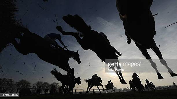 Runners and riders jump the third last in the Fulke Walwyn Kim Muir Challenge Cup Handicap Chase at Cheltenham Racecourse on March 13 2014 in...