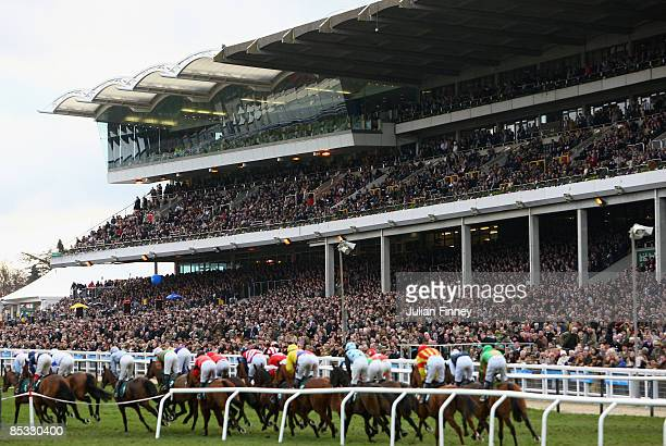 Runners and riders race in front of the stand in The David Nicholson Mares Hurdle Raceduring day one of the Cheltenham Festival at Cheltenham...