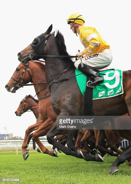 Runners at the start of race 6 during Sydney Racing at Royal Randwick Racecourse on June 9 2018 in Sydney Australia