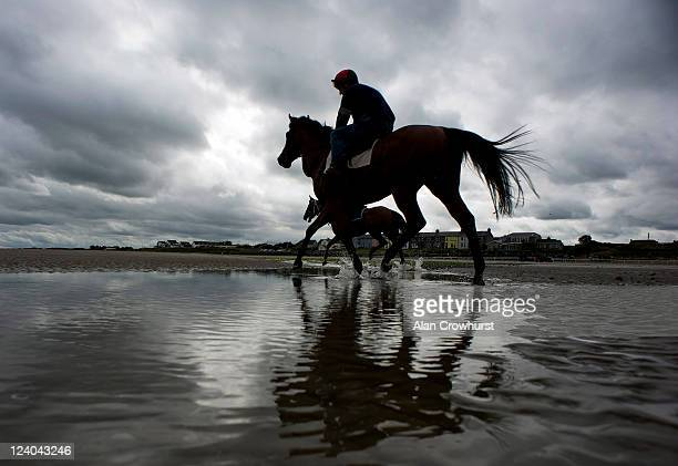 Runners canter before racing during the Laytown race meeting run on the beach on September 08 2011 in Laytown Ireland