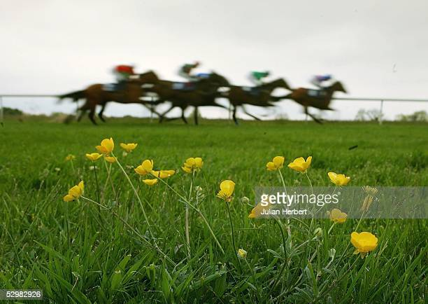Runners head down the straight during Division Two of The Skandia Median Auction Maiden Fillies Stakes Race run at Bath Racecourse on May 26 2005 at...