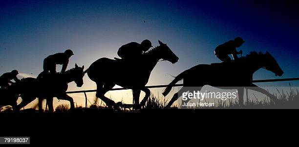 Runners head up the hill during The Crown Racing ''Your Best Bet'' Handicap Huurdle Race run at Fontwell Racecourse on January 24 in Fontwell England