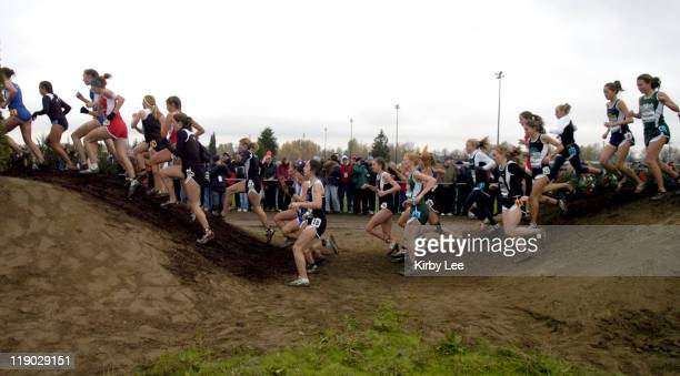 Runners in the girls race of the Nike Team National Cross Country Championships traverse hills at Portland Meadows Golf Course in Portland Ore on...