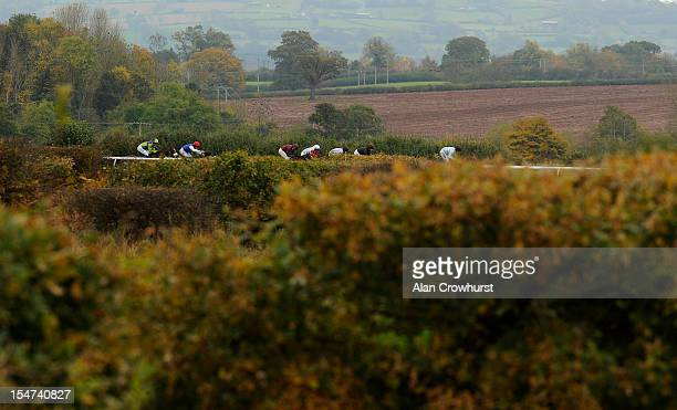 Runners in The Happy Birthday Matt Taylor Novices' Hurdle Race make their way down the back straight at Ludlow racecourse on October 25 2012 in...