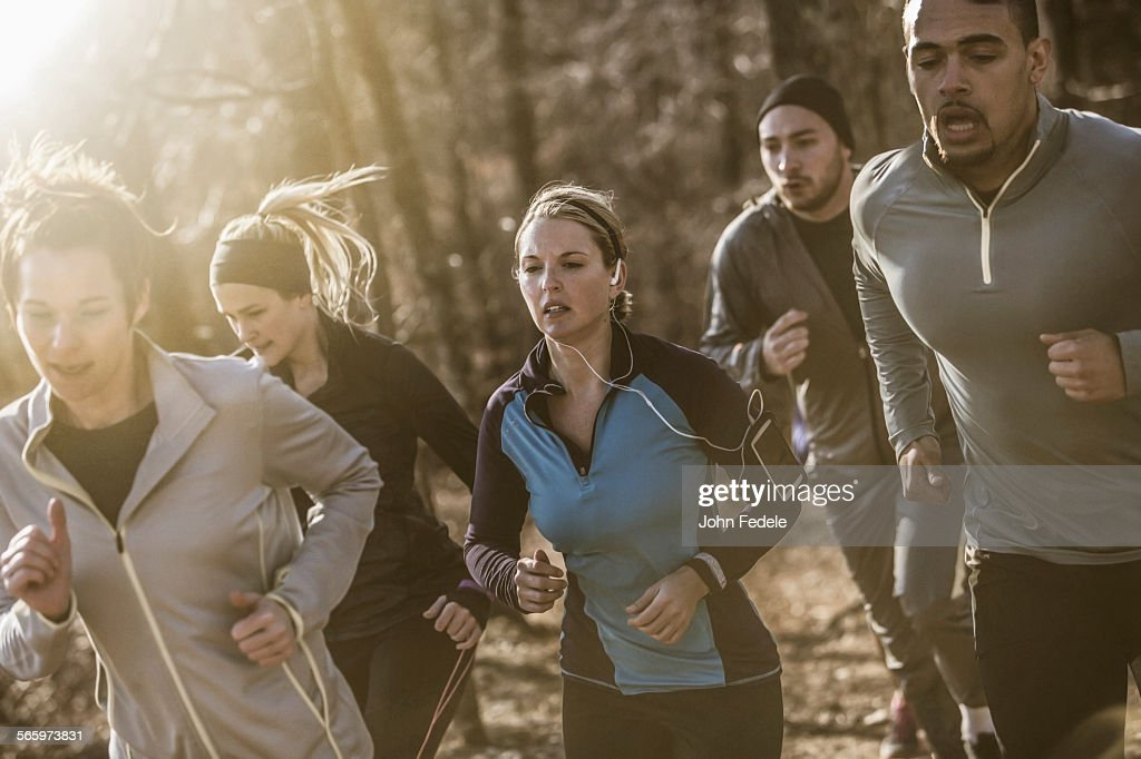 Runners jogging on dirt path in forest : Stockfoto