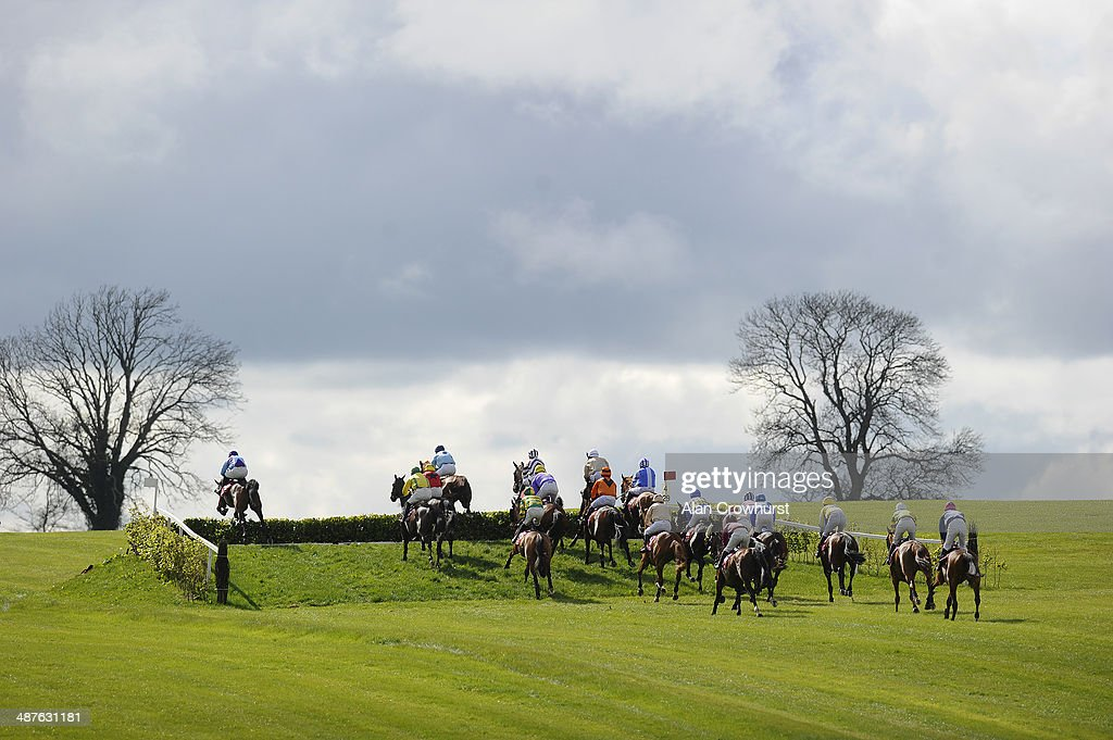 Runners jump the Laurel Hedge in The Avon Ri Corporate & Leisure Resort Chase For The La Touche Cup at Punchestown racecourse on May 01, 2014 in Naas, Ireland.