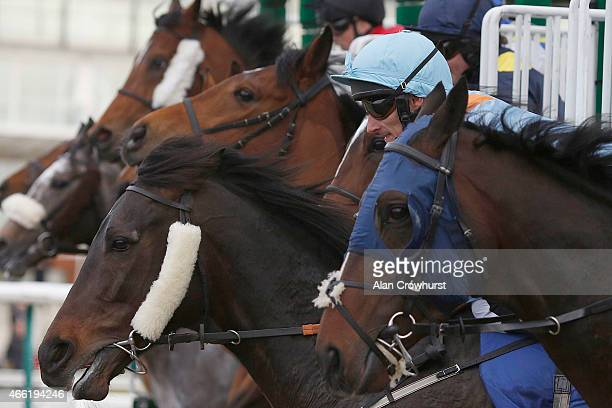 Runners leave the stalls in The coralcouk Winter Derby at Lingfield racecourse on March 14 2015 in Lingfield England
