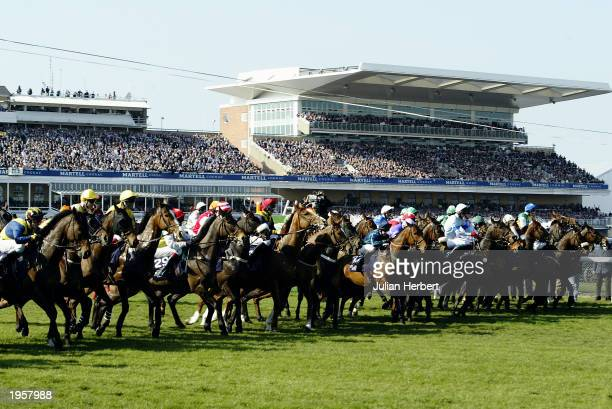 Runners line up at the start of The Martell Cognac Grand National Steeple Chase Race held on April 5, 2003 at the Aintree Racecourse, in Aintree,...