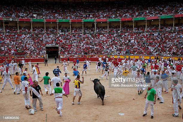 Runners make space for a Cebada Gago fighting bull as they enter the bullring on the third day of the San Fermin runningofthebulls on July 9 2012 in...