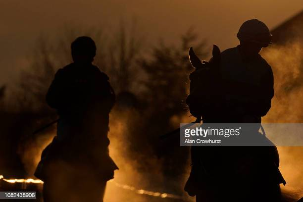 Runners make their return down the horsewalk as the evening sun sets behind at Cheltenham Racecourse on December 14 2018 in Cheltenham England