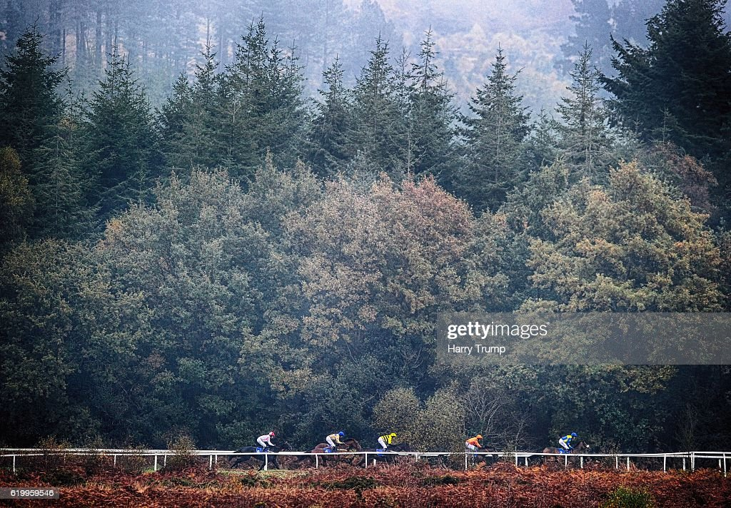 Runners make their way around the course at Exeter Racecourse on November 1, 2016 in Exeter, England.