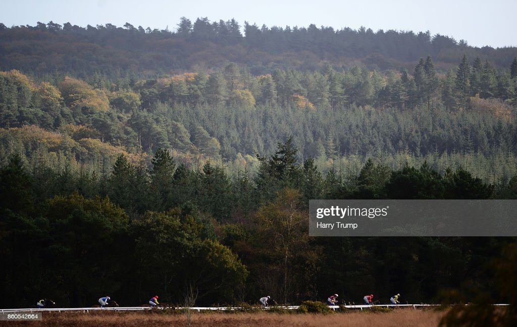 Runners make their way around the course during the Download The App At 188Bet Novices' Hurdle at Exeter Racecourse on October 12, 2017 in Exeter, England.