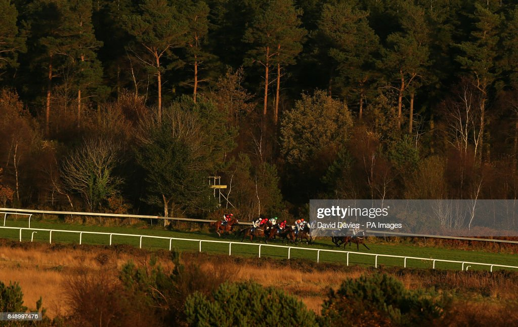 Runners make their way in the Bet With Racing UK App Handicap Chase
