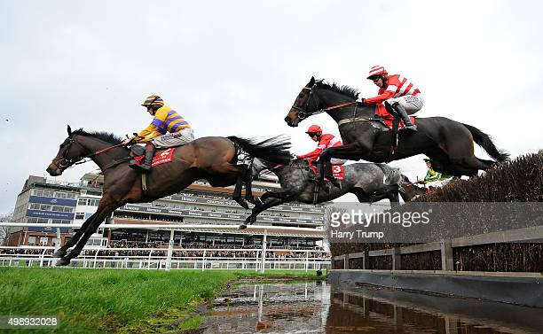 Runners make their way over the water jump during the The Fuller's London Pride Novices Steeple Chase at Newbury Racecourse on November 27 2015 in...