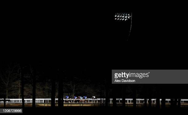 Runners make their way round the track during the Peter Andre Ladies Day Novice Stakes at Chelmsford City Racecourse on February 13 2020 in...